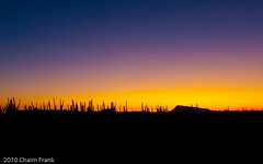 (jetrated) Tags: trees sunset sky orange plants paisajes mountain west nature netherlands colors dutch berg silhouette yellow landscape island atardecer twilight zonsondergang lowlight colorful tramonto purple bright paisaje colores amarillo cielo curacao tropical caribbean silueta lucht geel naranja curaao isla curazao oranje landschap antilles eiland kleurrijk netherlandsantilles paars caribe indies puestadelsol colorido ronde antillen klip stacatarina purpura datu seru boka nederlandseantillen antillas holandesas korsou karibisch caribisch korsow kadushi noordkant bandariba corsow neerlandesas labadera allrightsreservedcopyrightchaimfrank