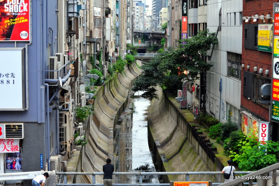 A strangely peaceful view in the big city. The Shibuya river that flows under the Tokyu Dept store