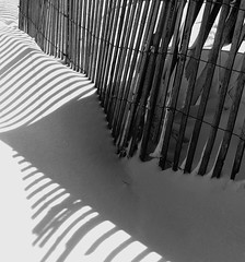 Snow Fence (Renee Rendler-Kaplan) Tags: winter light snow cold beach fence nikon shadows gbrearview snowy february evanston untouched gapersblock 2010 snowfence chicagoist lighthousebeach evanstonillinois nikond80 reneerendlerkaplan