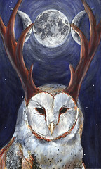 Phases (johnathan_roberts) Tags: moon illustration ink acrylic luna antlers owl circa phases