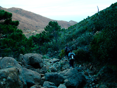 Descenso Sierra Bermeja (4)