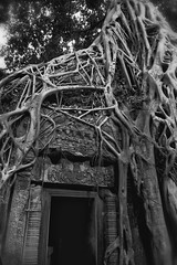 A Doorway At Ta Prohm (El-Branden Brazil) Tags: door old trees stone mystery asian fantastic ancient asia cambodia southeastasia cambodian time roots entrance exotic forgotten jungle mysterious mystical aged ancestors angkor taprohm tranquil distant longago fantastical