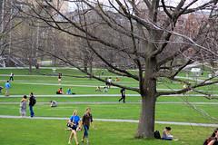 a brief interlude of summer. (matt.hintsa) Tags: ny newyork college grass spring university quad cornell ithaca 1785mm 1785 quadrangle cornelluniversity collegecampus artsquad summery ithacany 50d eos50d canoneos50d canon50d