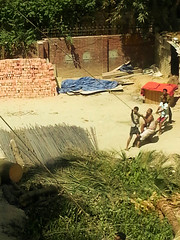 Tree Felling (Kaniz Khan 2009) Tags: people rope constructionsite pulling treefelling labourers