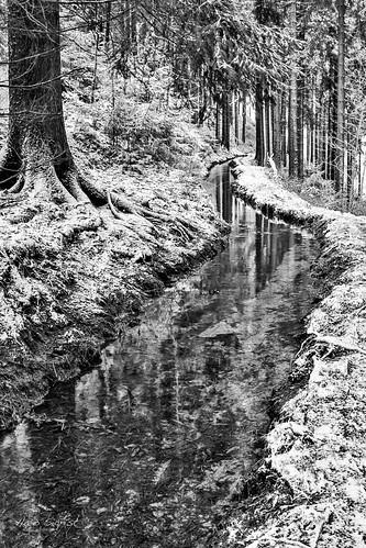Winterklang