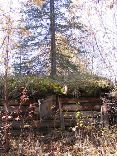 Sawmill cabin