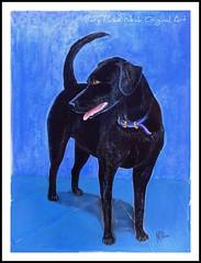 Clayton (dog.happy.art) Tags: original portrait rescue dog art painting lab acrylic drawing labmix handpainted dogdays dogart dogportraits animalpaintings mpn yourartnotphotography animalsinyourart theartisticdog canineart acrylicpainting dixielandartists catanddogpaintings