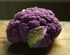Cauliflower_001348 (BillBrady) Tags: nyc stilllife food newyork digital magazine studio advertising cuisine photo wine image drink photos manhattan great beverage creative restaurants super location patient professional photographs cover drinks commercial cauliflower packaging editorial photostudio products annual brochures inexpensive cookbooks digitalphotography reasonable awardwinning foodphotography foodphotos a stockfood foodshots digitalstudio foodphotographer foodstylist propstylist billbrady culinaryphotos httpwwwstudio212photocom billbradyphotography billbradyphotographer hrefhttpwwwstudio212photocom relnofollowhttpwwwstudio212photocoma foodphotographerinny foodclasses