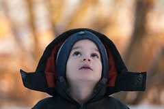 Looking For More Snow (Dagza) Tags: trees winter boy portrait brown snow cold up hat golden dof looking bokeh coat depthoffield hood