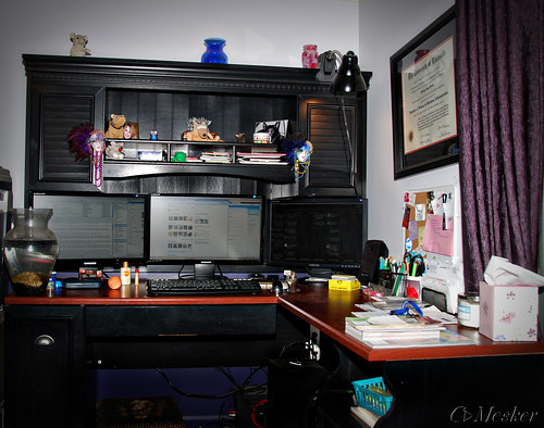 Clean & Organized - 24/365