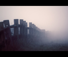 Musical (sparth) Tags: seattle park morning fog fence washington notes january foggy minimal 300mm musical redmond simple atmospheric barriere offleash 2010 marymoor marymoorpark 300mmf4l 50d offleasharea