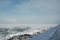 310110 ijmeer- en oostvaardersdijk (3) (rspeur) Tags: winter thenetherlands almere oostvaardersdijk