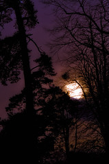 Marvellous Night for a Moondance... (Chris H#) Tags: trees orange moon clouds michael lowlight purple bedfordshire silhouettes mauve s3000 buble ampthill nikond5000 marvellousnightforamoondance