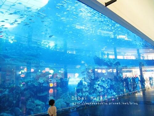 杜拜 dubai mall_8