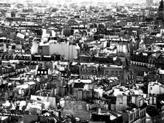 Rooftops of Paris (DMCleveland) Tags: urban paris france architecture buildings landscape view rooftops balckandwhite urbanlandscape roccotaco