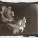 Lily—Van Dyke print from a dry glass plate