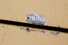 im Fluss - Meerschwein trifft Alligator (raumoberbayern) Tags: abstract face wall meerschwein guineapig wand alligator urbananimals wasserburg facialimpression robbbilder imfluss