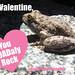 Happy Valentine's Day! Toad Valentine