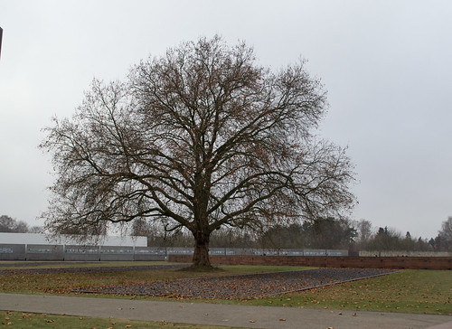 Sachsenhausen Concentration Camp Memorial (#0112)