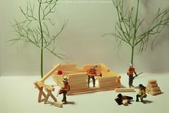 (Ben Kuropat) Tags: tinypeople bigworld ho minifigures miniature