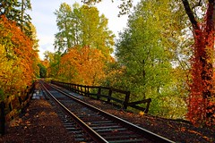 Oregon Autumn (Ian Sane) Tags: railroad autumn color fall leaves oregon canon ian eos george leaf flickr fallcolor bright d mark piano tracks images collection ii solo getty colored winston sane lullaby