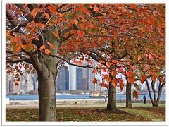 New York 2009 - Ellis Island