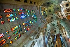 Spain - Barcelona - Sagrada Familia - looking up - ceiling