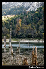 Slkl Gl (gorkemeren) Tags: autumn lake sonbahar slklgl dzce