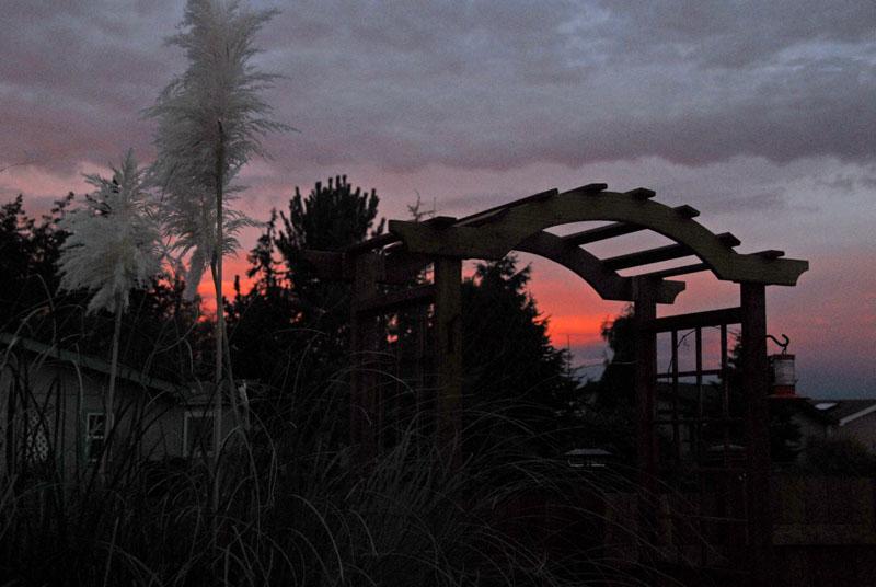 Sunrise 25 Nov 05