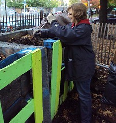 Sonya, The Compost Crank Master (The North Brooklyn Compost Project) Tags: brooklyn mccarrenpark worm worms compost 2009 greenpoint greenpointbrooklyn composting wormbin brooklynnewyork northbrooklyn katezidar wormbins mastercomposter thenorthbrooklyncompostproject nbcp thenbcp