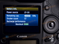 1D MarkIV Battery Info