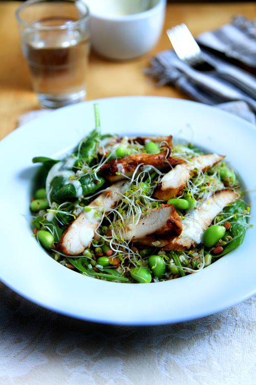 :: Rocket Power Chicken Superfood Salad