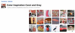 FauxDonna's Color Inspirations Coral and Gray Gallery