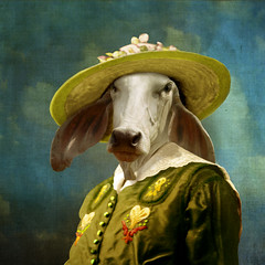 Valentine (Martine Roch) Tags: portrait woman love hat animal lady square thailand cow costume antique surreal valentine photomontage imagination surrealist manray petitechose martineroch flypapertextures