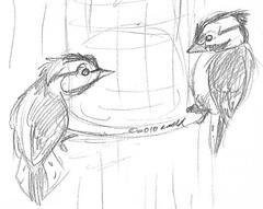 2.13.10 Sketchbook page