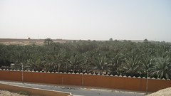 Riyadh ( ) Tags: hail muslim islam arabic arab saudi arabia muslims jeddah riyadh saudiarabia islamic arabiangulf persiangulf arabs alrashid alula alsaud  khaleej arabianpeninsula madainsaleh  nabataeans alrasheed   thamud
