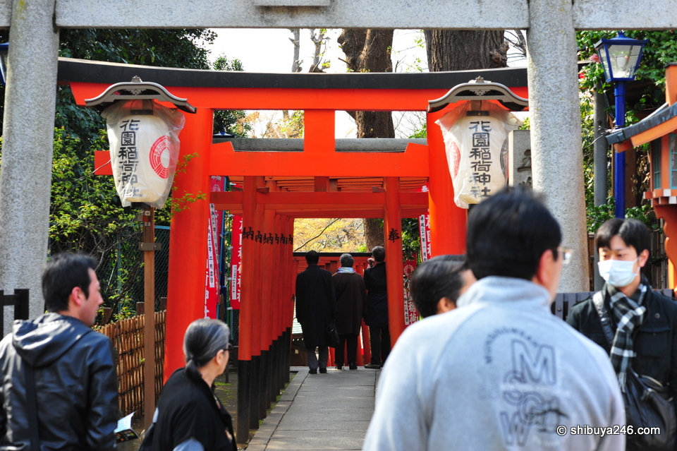 Local Shrine with some nice red color.
