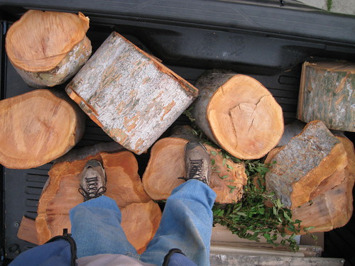 looking down at a legs standing on a pile of Chinese logs in back of truck