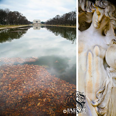 Reflection (Farage Photography) Tags: trees winter brown storm reflection water leaves statue clouds stars dead dc washington pond memorial wind unique famous president location messy lincoln aged dipitthursday