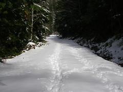 Continuing up Deer Creek road, More snow.