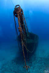 R.I.P (Lea's UW Photography) Tags: underwater maui wreck fins unterwasser carthaginian tokina1017mm leamoser