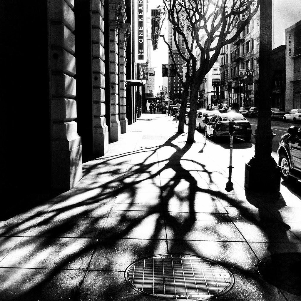 Forward, by Nicole Aptekar