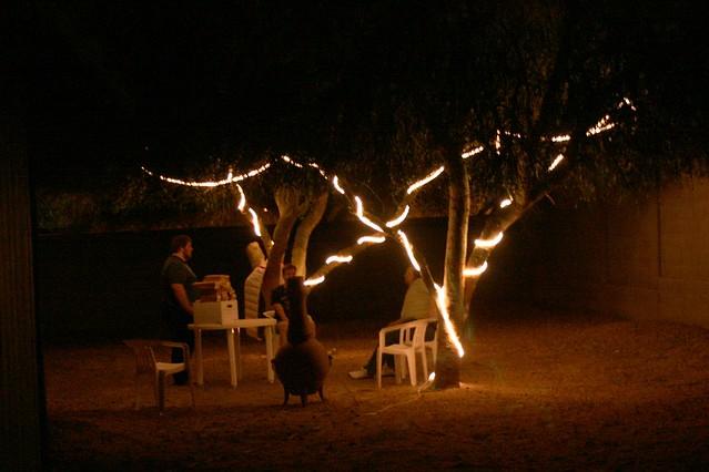 Rope Lights Backyard