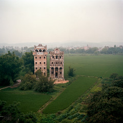 Two Towers (kenny ip) Tags: china tree 120 6x6 film rooftop field rural buildings mediumformat village kodak portra diaolou 160nc kaiping norita norita66 80mmf2 noritar kennyip