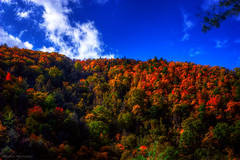 Fall Color (Malcolm MacGregor) Tags: blue autumn trees sky mountains color fall forrest tennessee fork explore trail appalachian hampton laurel thechallengefactory