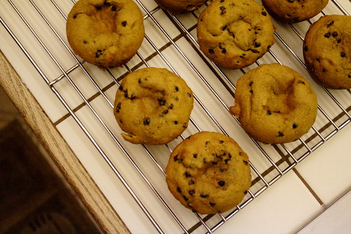 pumpkin.muffins.004