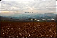 ... IMG_5550 (*melkor*) Tags: autumn art fall field fog clouds landscape geotagged poetry colours hill foggy experiment minimal hills fields conceptual grei melkor trashbit almostamidnovemberimpression anunusuallygreyautumnproject