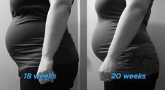 18-20 Week Comparison