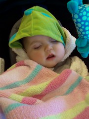 Mia snoozing after MRI