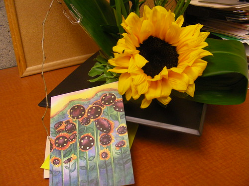 Sunflowers for my dad